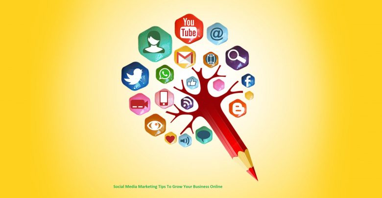 Social Media Marketing Tips To Grow Your Business Online