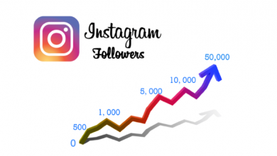 Foundations to Grow Your Instagram Account
